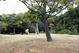 大阪南港:野鳥園
