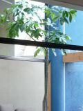 堺:上野芝の家