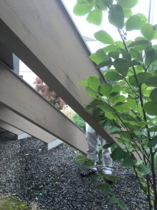 奈良学園前の庭 (1)