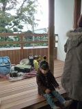 兵庫:西宮の家 窓台