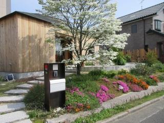広島向洋の家植栽