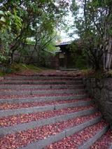 奈良紅葉のアプローチ