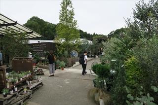 大阪石切り植栽 (2)
