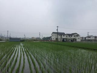 広島の敷地