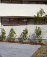 百舌鳥の家