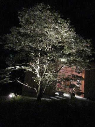 広島の家住まいの様子 (4)