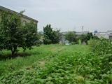 大阪:上野芝の家 裏の敷地
