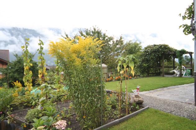 ブリエンツの庭