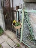 奈良:香芝の家2