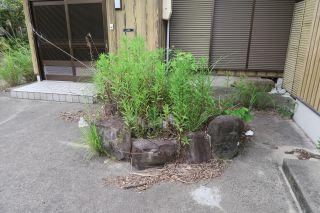敷地の石 (2)