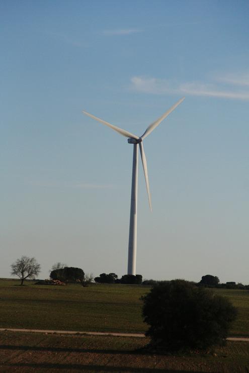 風力発電7