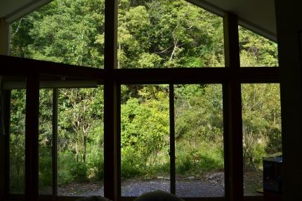 奈良北庭Ⅱ (2)