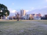 大阪の難波宮