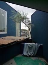 大阪:堺 上野芝の家 2階植栽