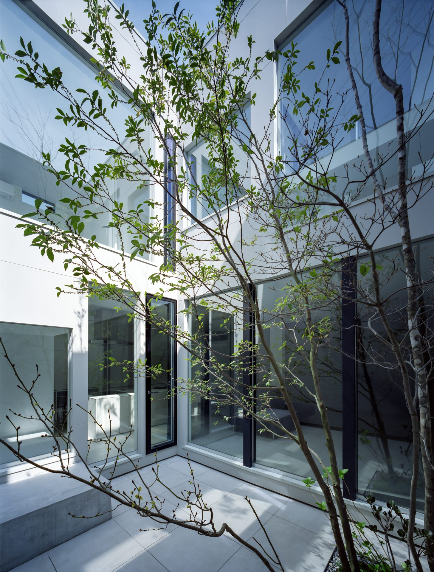 大阪河内長野のコートハウスの中庭