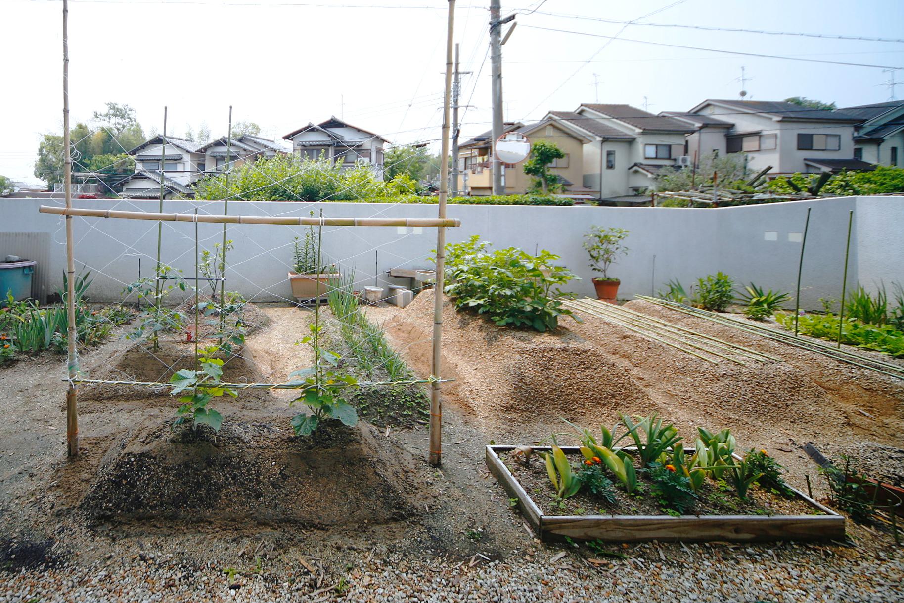 奈良大和郡山の家の庭