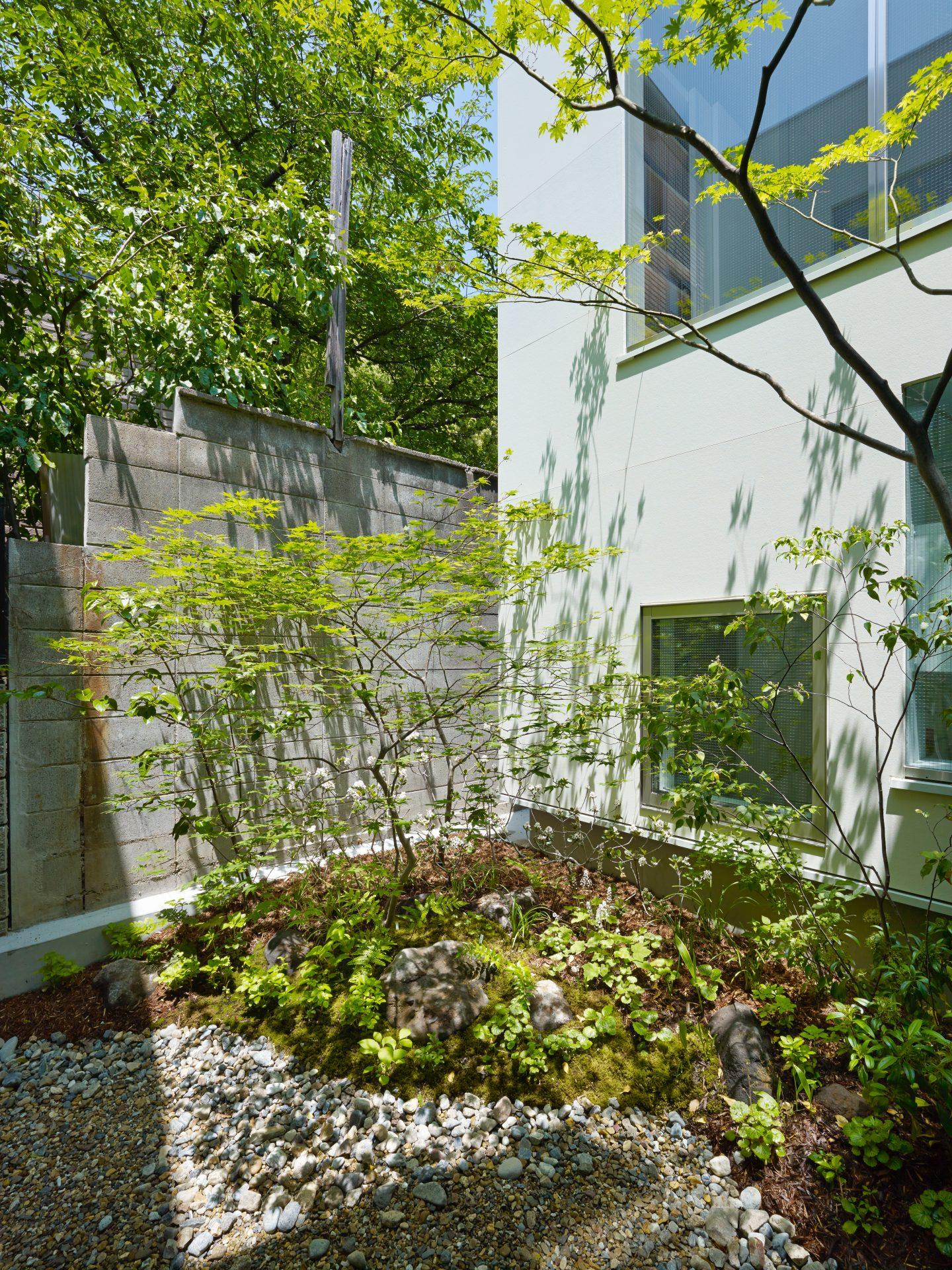 大阪住吉の家の中庭
