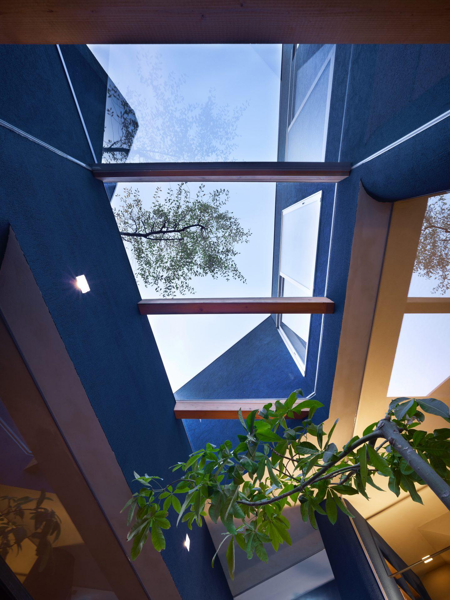 大阪上野芝の家の天窓